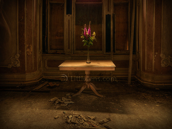 flowers for the abandoned